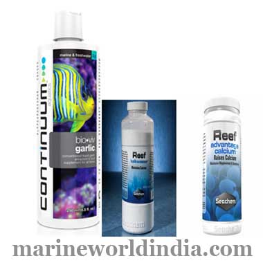Marine-Reef-Buffers-in-Kolkata