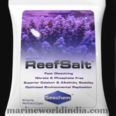 Marine-Salt-in-Kolkata-World
