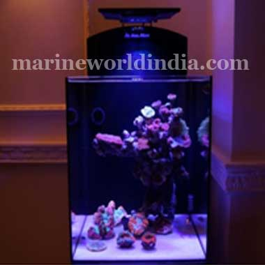 Marine-World-Nano-Desctop-Aquariums